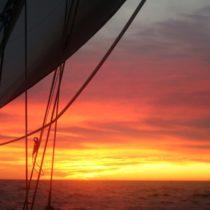 Sailing Pains